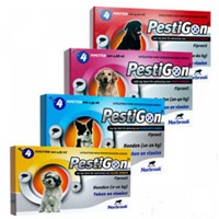 pestigon-dog_1